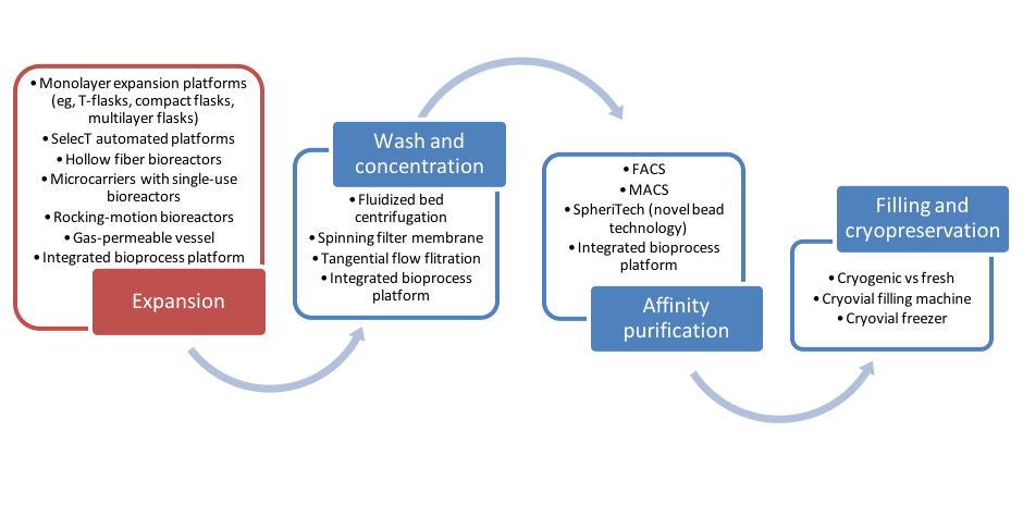 JMIR - Decision Support Tools for Regenerative Medicine