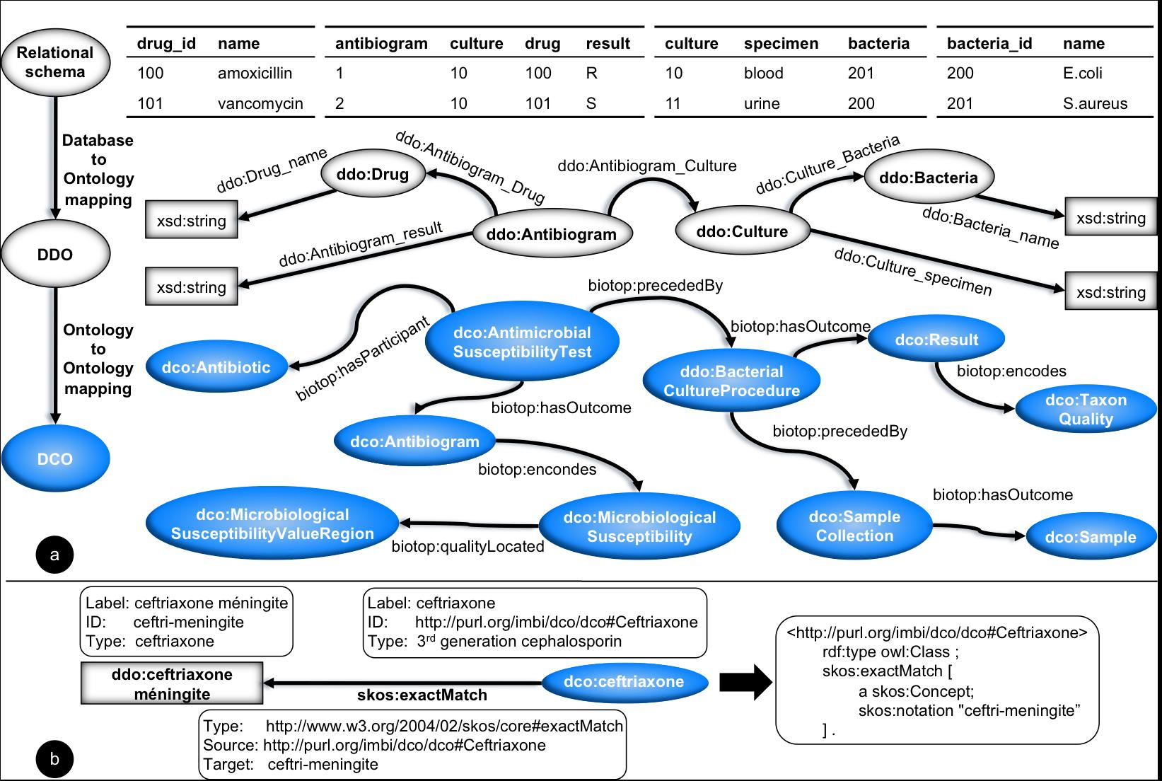 Jmir building a transnational biosurveillance network using figure 5 pronofoot35fo Gallery