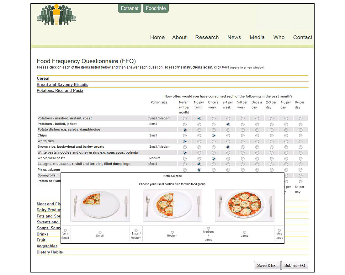 Screenshot Of The Online Food4Me Food Frequency Questionnaire.  Food Journal Sample