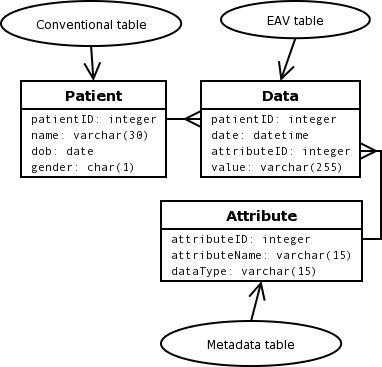 figure 1 - Clinical Database Programmer